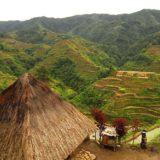 Phillippines GMO Controversy Heats Up Over Court Ruling