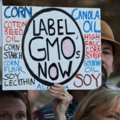 Senate GMO Labeling Bill Fails to Pass